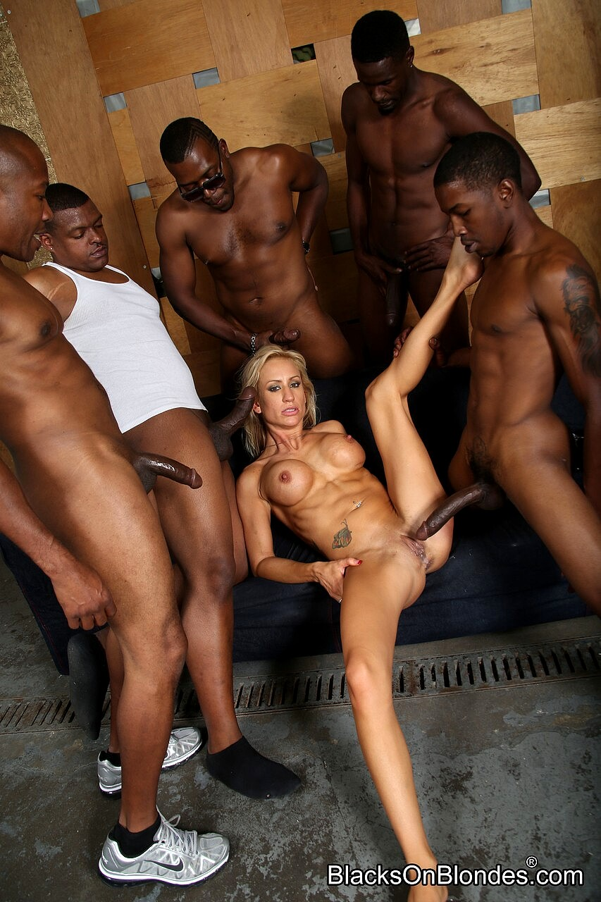 Curry cream pie gang bang dvd by white ghetto images