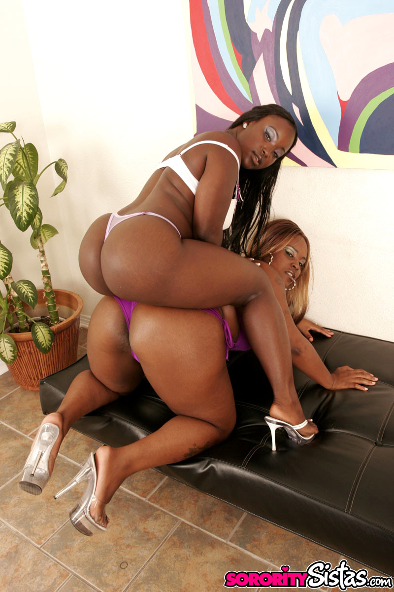 Bbw Black Lesbian Porn
